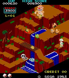 Congo Bongo Arcade