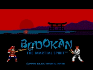budokan-the-martial-spirit-u-c000